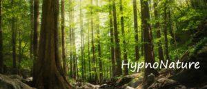 Read more about the article HypnoNature – Ressourcement en forêt