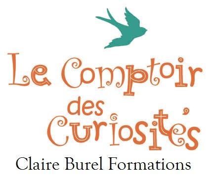 Logo-LeComptoirDesCuriosites-Simplifie-CBForm_PM